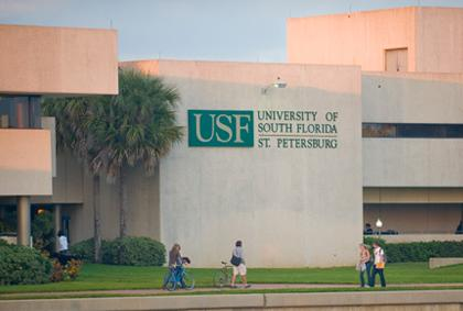USF St. Petersburg  Faculty Senate Committee: Ad Hoc
