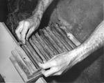 Man placing cigars on a press at Cuesta Rey and Company