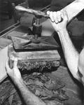 Man closing cigars in a press at Cuesta Rey and Company
