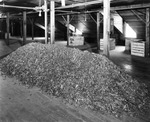 Tobacco leaf residue in a cigar factory warehouse