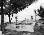 Picnickers at the Courtney Campbell Causeway