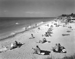 Sun bathers at the beach near the Palm Pavilion in Clearwater