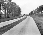 U.S. Highway 41 as it leaves Tampa