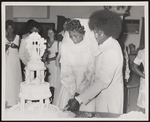 Bride and groom cutting their wedding cake surrounded by wedding attendees