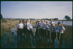 Cockroach Bay marsh planting : Environmental Lands Acquisition and Protection Program Collection