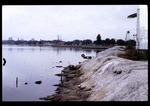 Desoto park addition shoreline : Environmental Lands Acquisition and Protection Program Collection