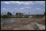 E.G. Simmons Park habitat enhancement : Environmental Lands Acquisition and Protection Program Collection