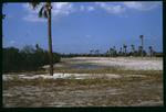 E.G. Simmons Park coastal habitat : Environmental Lands Acquisition and Protection Program Collection