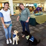 Therapy Dogs, August 1st 3:30 - 4:30 by Berrie Watson