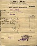 [Ocean liner ticket] - Bilhete de passagem em terceira classe by Cosulich Line