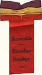 "Ribbon - ""Bienvenido Marcelino Domingo"""