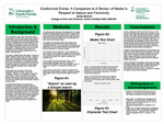 Ecofeminist Extras: A Companion to A Review of Media in Respect to Nature and Femininity