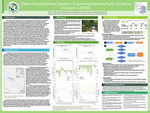Determining Methane Uptake in Tropical Agroforestry Soils: A Case for Inclusion in REDD+ by Callie L. Mills, Richard S. Mbatu, Yasin Elshorbany, James Ivey, and Bob Wang