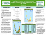 Mapping the Effects of Hurricane Michael and Biological Drivers of Change on Seagrass in St. Joseph Bay, Florida by Allison Senne
