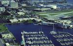 University of South Florida St. Petersburg campus 1991 by University of South Florida St. Petersburg