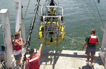 College of Marine Science researchers at sea