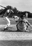 Baseball game at USF