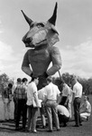 Early depiction of USF mascot
