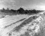 Fowler Avenue before USF