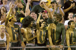 Football fans painted green and gold